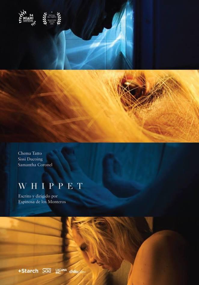 poster_whippet